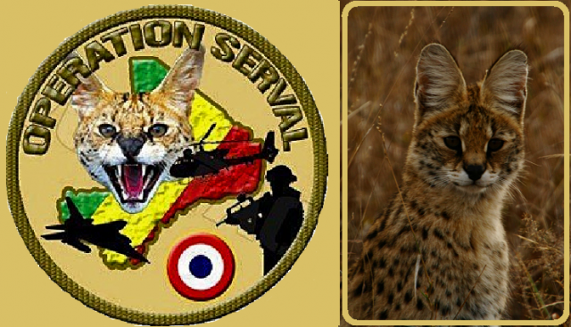 operation-serval-maliΑ