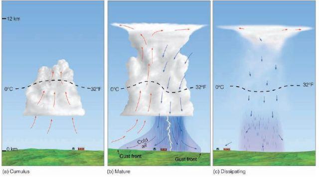 Εικόνα 1. Απλοποιημένο μοντέλο απεικόνισης του κύκλου ζωής μιας τυπικής καταιγίδας (ordinary cell thunderstorm) που είναι σχεδόν στάσιμη πάνω από μία περιοχή με ασθενή κατακόρυφη διάτμηση του ανέμου. Τα βέλη υποδεικνύουν τα ανοδικά και καθοδικά ρεύματα, ενώ η διακεκομένη γραμμή αντιστοιχεί στην ισόθερμη του επίπεδου παγοποίησης (freezing level). (a) Στάδιο ανάπτυξης, (b) Στάδιο ωρίμανσης, (c) Στάδιο διάλυσης. (Πηγή: Meteorology Today, D. Ahrens, 2009).